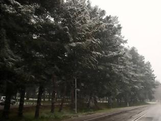 Φωτογραφία για Αγριεύει ο καιρός: Καταιγίδες, χιόνια και πτώση θερμοκρασίας έως και 10 βαθμούς