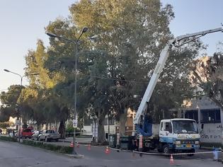 Φωτογραφία για Δήμος Αγρινίου: Εργασίες καθαρισμού και κοπής των χόρτων στην εθνική οδό.