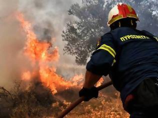 Φωτογραφία για Δύο φωτιές σε εξέλιξη στην Κορινθία και στην Ηλεία