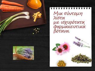 Φωτογραφία για Μια σύντομη λίστα με ισχυρότατα φαρμακευτικά βότανα.