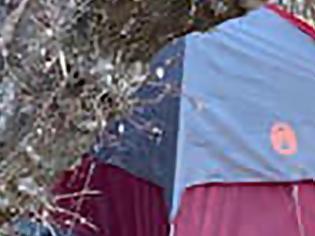 Φωτογραφία για Αγνοούμενη από το 2020 βρέθηκε να ζει σε σκηνή - Τρεφόταν με βρύα και γρασίδι