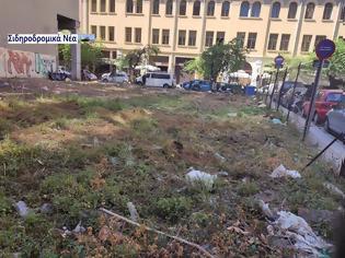 Φωτογραφία για Θεσσαλονίκη: Καθαρίστηκε επιτέλους το πρώην οικόπεδο του ΟΣΕ στην οδό Φράγκων. Εικόνες.