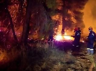 Φωτογραφία για Κόλαση φωτιάς στον Σχίνο Κορινθίας: Eκκενώνεται το Αλεποχώρι