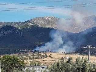 Φωτογραφία για Πυρκαγιά σε δασική έκταση στα Μέγαρα - Επιχειρούν ισχυρές δυνάμεις της Πυροσβεστικής