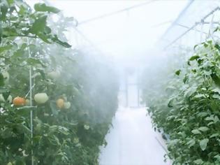 Φωτογραφία για «Έξυπνο»,  εξ αποστάσεως θερμοκήπιο για περιοχές με «δύσκολο» κλίμα