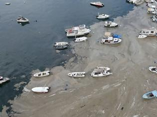 Φωτογραφία για «Θαλάσσια βλέννα» στη θάλασσα του Μαρμαρά: Έλληνες επιστήμονες λύνουν το γρίφο