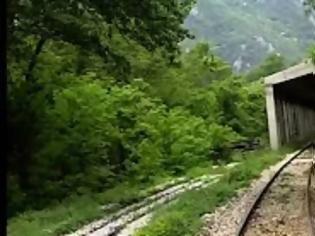 Φωτογραφία για Ταξιδεύοντας με τρενο στην κοιλάδα του Νέστου. Βίντεο.
