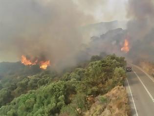 Φωτογραφία για Φωτιά στη Χίο: Εκκενώθηκαν προληπτικά 3 χωριά - Στη μάχη της κατάσβεσης και το ρωσικό θηρίο