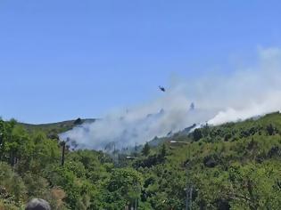 Φωτογραφία για Μεγάλο πύρινο μέτωπο στα Στύρα Ευβοίας: Στα χίλια μέτρα από το Νιμπορειό οι φλόγες -Μάχη από αέρος και εδάφους