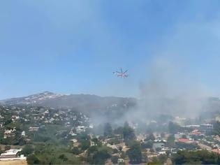 Φωτογραφία για Φωτιά στην Παλλήνη: Ισχυρές δυνάμεις της πυροσβεστικής στην περιοχή