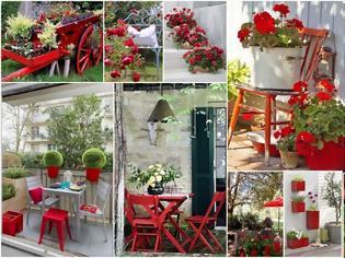 Φωτογραφία για Προσθέστε Κόκκινες ...πινελιές στην αυλή ή το μπαλκόνι σας