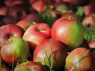 Φωτογραφία για Το μονοπάτι που οδηγεί στην υγεία θα μπορούσε να είναι τόσο απλό, όσο ένα μήλο την ημέρα