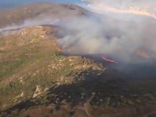 Φωτογραφία για Ισπανία: Καίγεται το φυσικό πάρκο στην Καταλονία – 350 άνθρωποι εγκατέλειψαν τα σπίτια τους