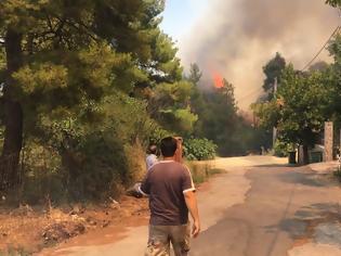 Φωτογραφία για Φωτιά στη Σταμάτα: Τρομακτικές εικόνες με τεράστιες φλόγες πολύ κοντά σε σπίτια
