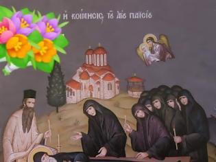 Φωτογραφία για «Μόλις κοιμήθηκε ο Άγιος Παΐσιος, άστραψε το πρόσωπο του και άρχισε όλο το σώμα να εκπέμπει ευωδία και αστραπή!»
