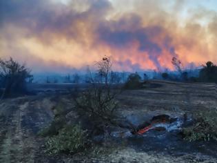 Φωτογραφία για Τουρκία: Ένας νεκρός από τη δασική πυρκαγιά που μαίνεται για δεύτερη ημέρα στα νότια της χώρας