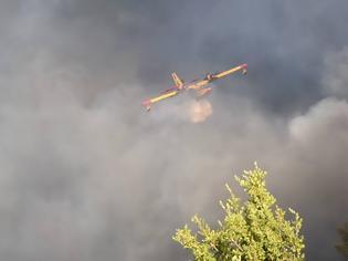 Φωτογραφία για Φωτιά στη Μύκονο: Κάηκαν μηχανές - Πλησίασαν τις βίλες οι φλόγες
