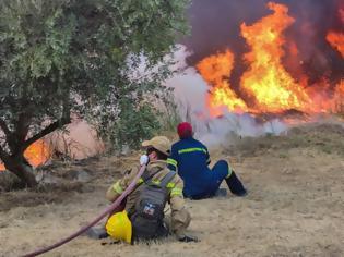 Φωτογραφία για Αρχαία Ολυμπία: Στις φλόγες οι Πεύκες - Καίγονται σπίτια - Πληροφορίες για εγκλωβισμένους