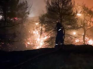 Φωτογραφία για Καταγγελία- «βόμβα» για Βαρυμπόμπη: «Είδα άνδρες ντυμένους αστυνομικούς να βάζουν φωτιά»