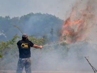Φωτογραφία για Φωτιά Ηλεία: Νέες αναζωπυρώσεις στα Βίλλια και τον Δούκα
