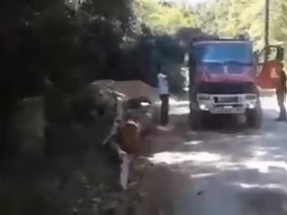 Φωτογραφία για Σοκάρουν μαρτυρίες για παρεμπόδιση κατάσβεσης και απάθειας πυροσβεστικών δυνάμεων (Video)