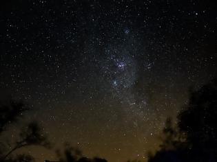 Φωτογραφία για Σημαντική μερίδα του ζωικού βασιλείου πλοηγείται συχνά χάρη στα άστρα