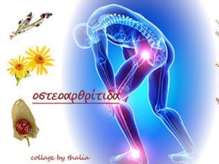 Φωτογραφία για Οι δράσεις των βοτάνων-Ισχυρά βότανα για την οστεοαρθρίτιδα