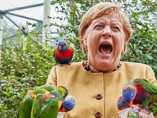 Φωτογραφία για Γερμανία: Όταν παπαγάλος δάγκωσε τη Μέρκελ που θέλησε να τον ταΐσει