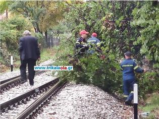 Φωτογραφία για Τρίκαλα – Ακινητοποιήθηκε τρένο – Δέντρο έπεσε στις γραμμές εξαιτίας της κακοκαιρίας.