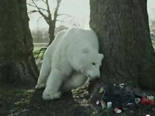Φωτογραφία για Μία πολική αρκούδα στο Λονδίνο, το βίντεο-συναγερμός για την Αρκτική