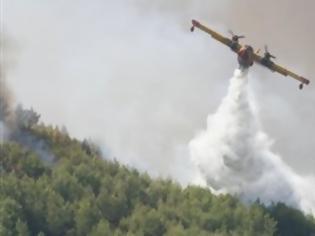 Φωτογραφία για Πυρκαγιά στον Άγιο Κωνσταντίνο Κεφαλονιάς