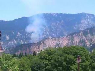 Φωτογραφία για Υπό έλεγχο η φωτιά στο Περτούλι