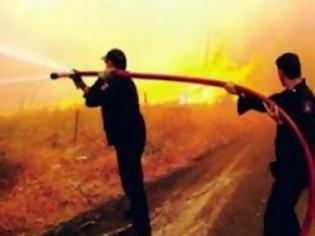 Φωτογραφία για Συνεχίζουν να δίνουν μάχη με τις φλόγες οι πυροσβέστες στην Κορινθία