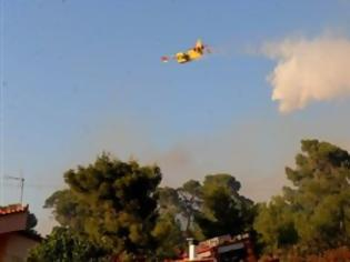 Φωτογραφία για Πολύ υψηλός κίνδυνος πυρκαγιάς και σήμερα