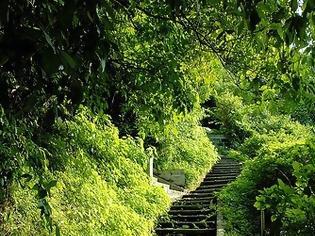 Φωτογραφία για Αυτά τα σκαλοπάτια - 2 -