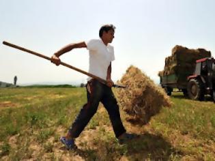 Φωτογραφία για 659.000 ευρώ για τους αγρότες του Τυμπακίου!