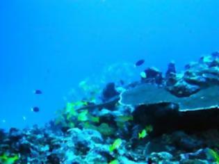Φωτογραφία για Αναπόφευκτη η άνοδος της στάθμης των ωκεανών