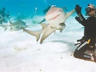 Φωτογραφία για Χειραψία με καρχαρία
