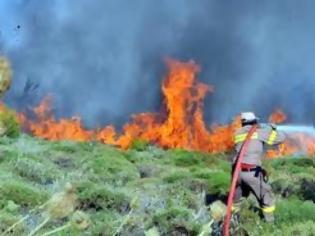 Φωτογραφία για Πυρκαγιά στον Κότρωνα Λακωνίας