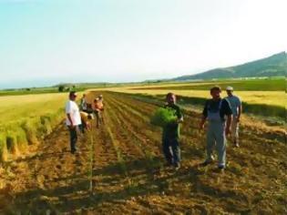 Φωτογραφία για Περιφέρεια Κρήτης: Ενημέρωση για τους Νέους Αγρότες έτους ένταξης 2009