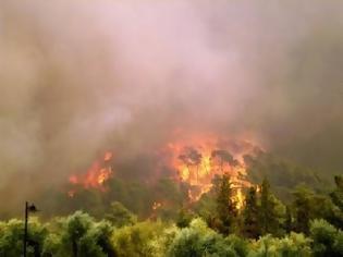 Φωτογραφία για Πυρκαγιά στην Κέρκυρα