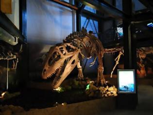 Φωτογραφία για Οι Δεινόσαυροι της Παταγονίας έρχονται στην Αθήνα!