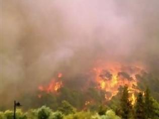 Φωτογραφία για Πυρκαγιά στη Μεγαλόπολη