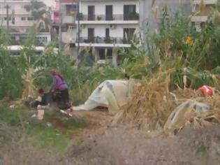 Φωτογραφία για Αγρίνιο: Άνθρωποι ζουν σε τέντες στα παλιά σφαγεία - Δείτε φωτο