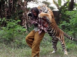 Φωτογραφία για Ο άνθρωπος και η τίγρη