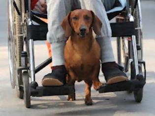 Φωτογραφία για Φωνή αγανάκτησης από άτομο με αναπηρία 80%, που του καθυστερούν το προνοιακό επίδομα!
