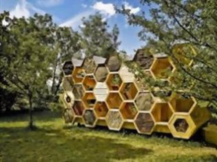 Φωτογραφία για Ξενοδοχείο μελισσών λειτουργεί σαν χώρος αναψυχής