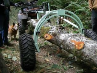 Φωτογραφία για Αχαΐα: Η ανακοίνωση της ΕΛ.ΑΣ.για τους πυροβολισμούς στη Στροφυλιά - Συμπλοκή για ένα πεσμένο δένδρο...