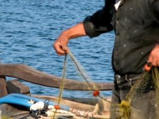 Φωτογραφία για Κυλλήνη: Καλή η «ψαριά», αλλά... απούλητη!