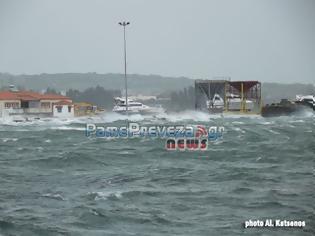 Φωτογραφία για Πρέβεζα: Ισχυροί άνεμοι έπληξαν την πόλη - Δέντρο έπεσε πάνω σε αυτοκίνητα πριν την παρέλαση - Έσωσαν την τελευταία στιγμή σκάφος στο λιμάνι